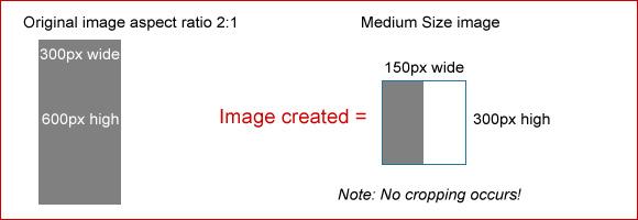 medium-150-600