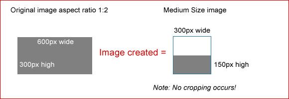 medium-600-150